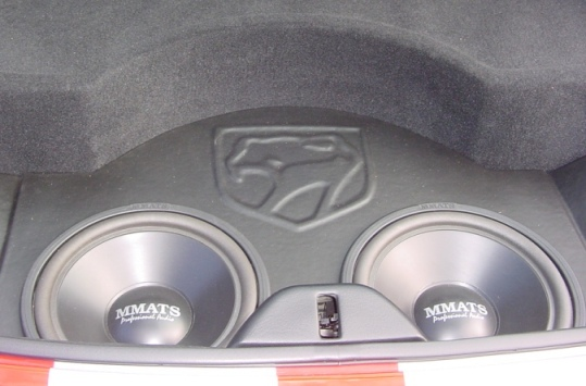 Ten Inch Subwoofers and Custom Box